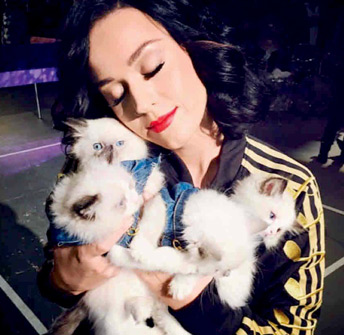 Katy con su kitty.