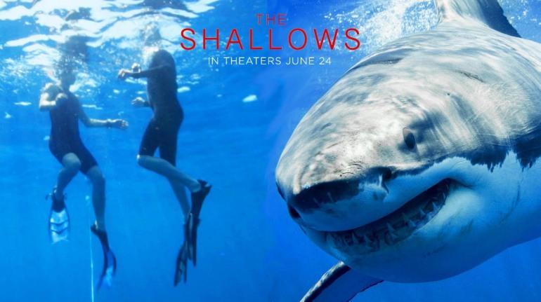 'The Shallows', Una de las mejores películas terroríficas del año.